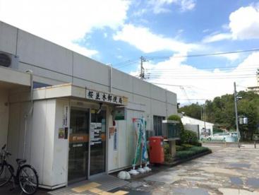 桜並木郵便局の画像1