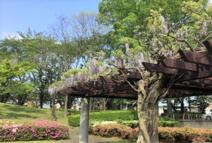 天久保公園