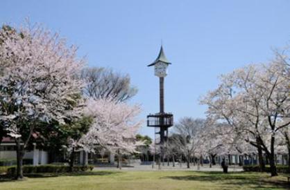 二の宮公園の画像1