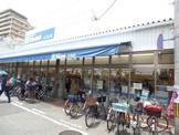 マルハチ立花店