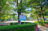 東越谷第三公園
