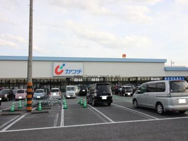 カワチ薬品 前橋南店の画像1