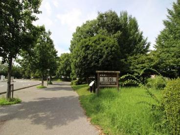 敷島公園の画像1