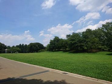 光が丘公園の画像3