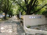 中下条公園