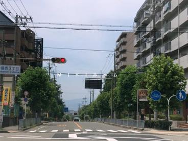 スギ薬局 箕面船場店の画像4