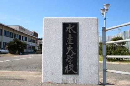 水産大学校の画像2