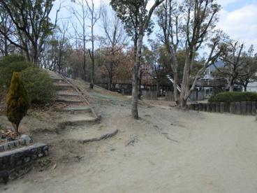 唐池公園の画像3