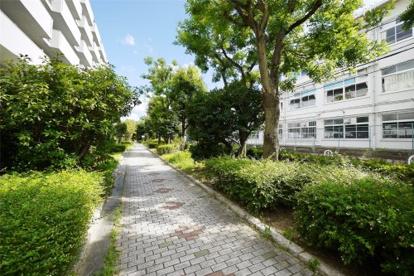 江尻川緑道の画像2