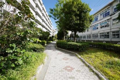 江尻川緑道の画像3