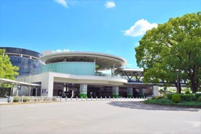 京都競馬場の画像1