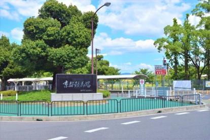 京都競馬場の画像2