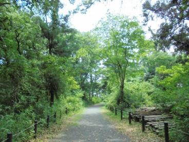 こんぶくろ池自然博物公園ふじ池エリアの画像1
