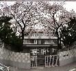 東京都立広尾高等学校