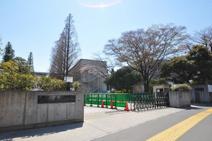 早稲田大学 戸山キャンパス