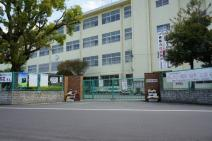 曰佐中学校