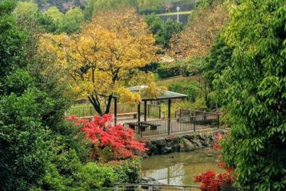 旭ケ丘近隣公園の画像1