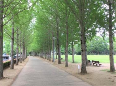 科学万博記念公園の画像1
