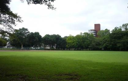 手代木公園の画像1