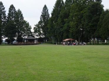 秋留台公園の画像1