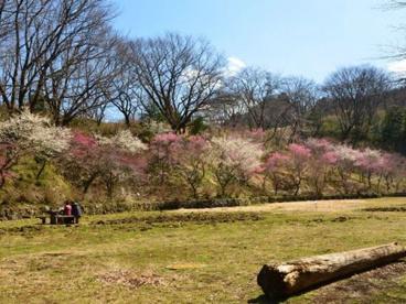 小峰公園の画像1