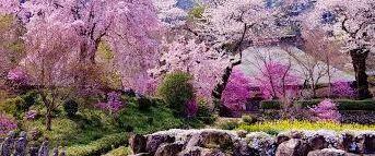 網代弁天山公園の画像1