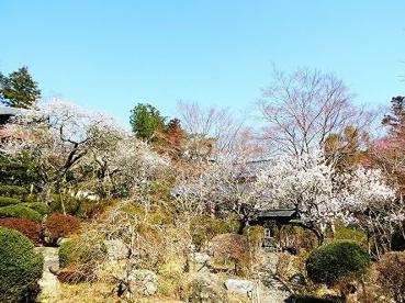 日向和田臨川庭園の画像1