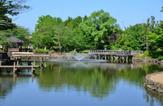 瑞穂町営狭山池公園