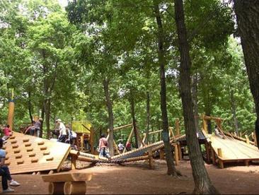 野山北・六道山公園 (冒険の森)の画像1