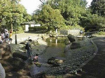 蚕糸の森公園の画像1