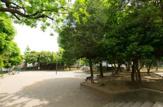 中央西公園