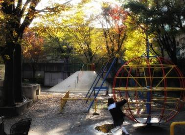 中野区立ささの葉公園の画像1