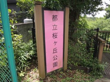 都立桜ケ丘公園 旧多摩聖蹟記念館の画像3