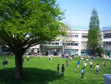杉並区立大宮小学校の画像1
