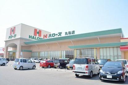 ハローズ 丸亀店の画像1
