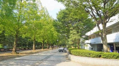 朝霞市/朝霞中央公園の画像1