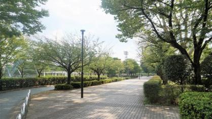 朝霞市/朝霞中央公園の画像2