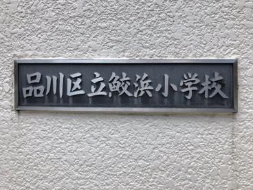 鮫浜小学校の画像2