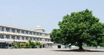 小田原市立千代小学校