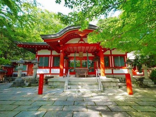 瑜伽神社(ゆうがじんしゃ)の画像