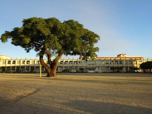 建昌小学校の画像