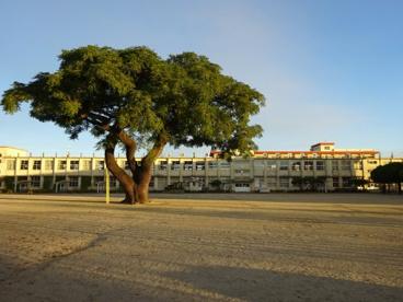 建昌小学校の画像1