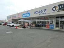 ウエルシア坂戸八幡店