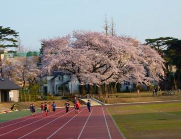 和田堀公園 済美山運動場の画像1
