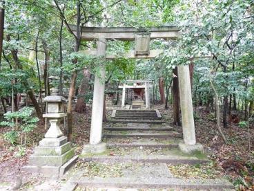 和爾下神社(わにしたじんじゃ)の画像5