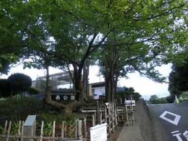横須賀市西公園の画像1
