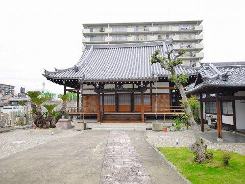 徳願寺の画像