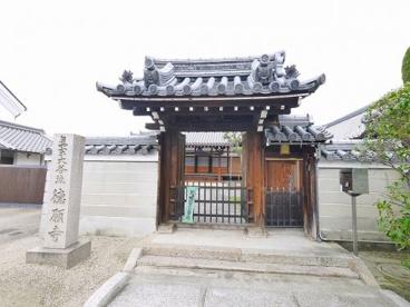 徳願寺の画像3