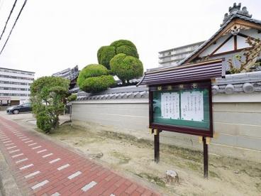 徳願寺の画像4