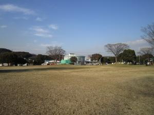 堺田公園の画像1